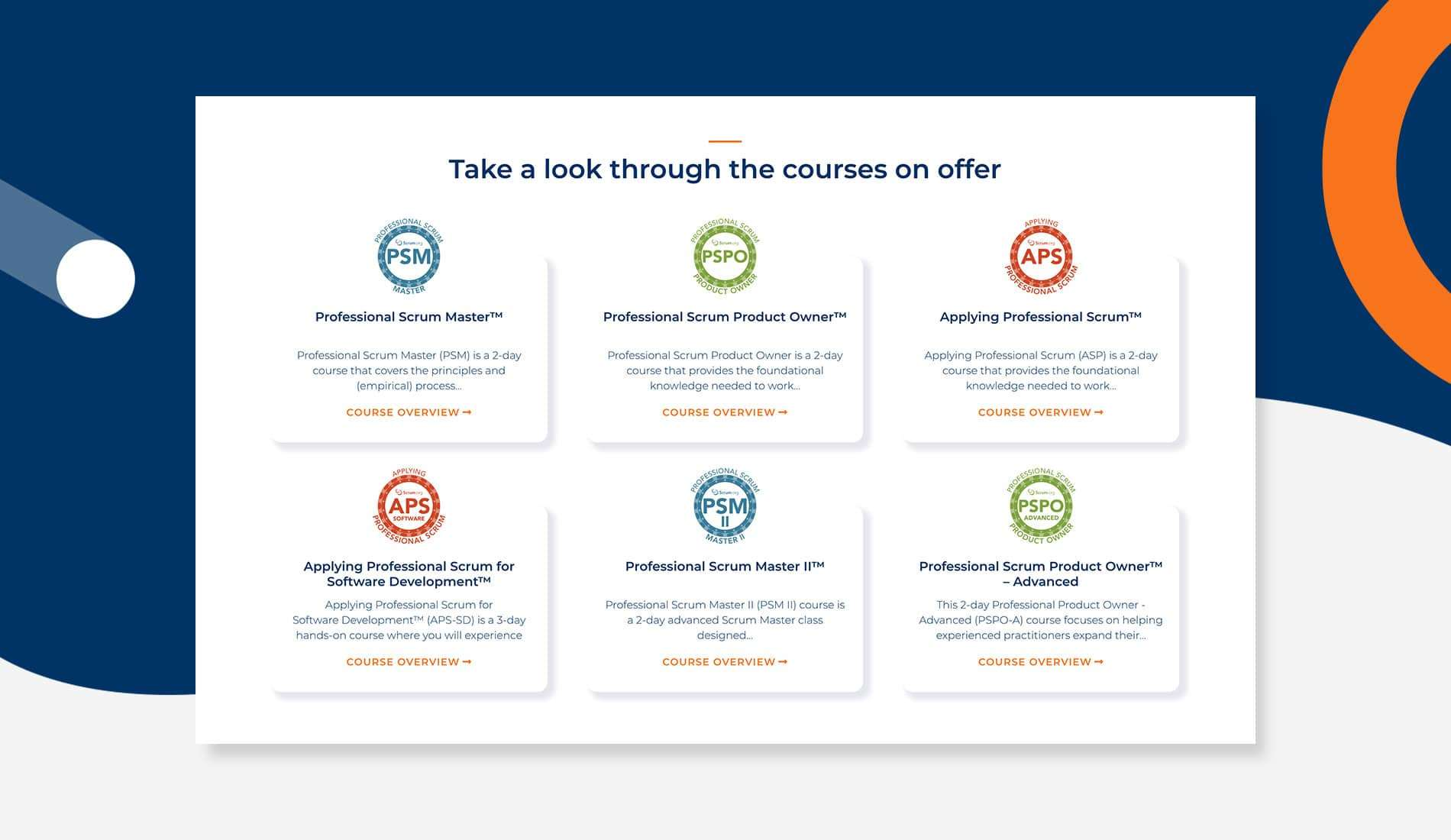 Bagile our course mockup